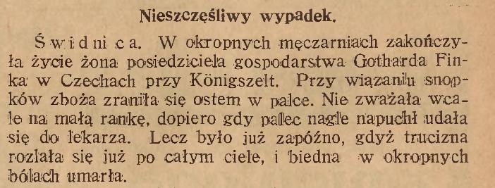 Wypadek Czechy 1928